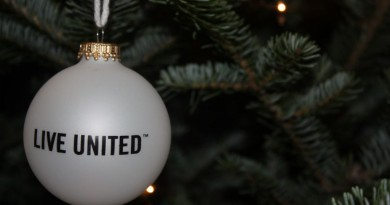 Holiday ornament on tree